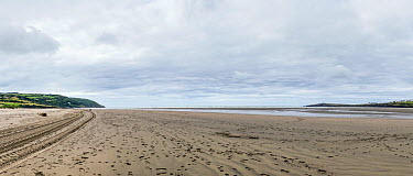 Panoramic view taken from the southern side of the River Teifi Estuary, Poppit Sands, near Cardigan, Pembrokeshire, Wales, United Kingdom, September 2013  -  Graham Brazendale/ npl