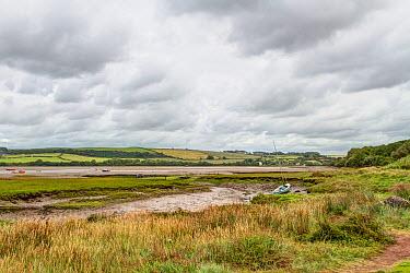 Poppit Sands on the southern side of the estuary of the River Teifi, near Cardigan, Pembrokeshire, Wales, United Kingdom, September 2013  -  Graham Brazendale/ npl