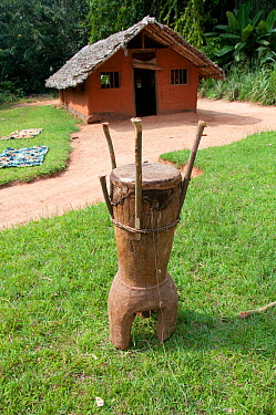Village drum used to gather people for announcements, Mbuti Pygmy village, Democratic Republic of the Congo, Africa, January 2012  -  Steve O. Taylor/ npl