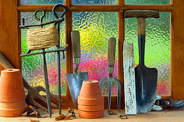 Potting shed window with flower pots, hand forks, string and trowel on sill  -  Ernie Janes/ npl