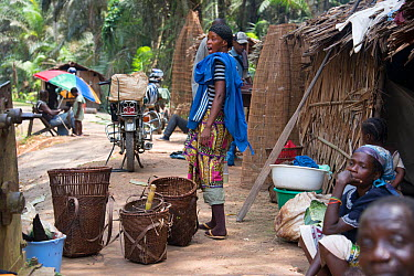 Trading camp with female trader shouting, Salonga National Park, Equateur Region, Democratic Republic of the Congo  -  Steve O. Taylor/ npl