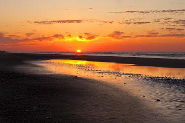 Sunrise at Folly Island along the Atlantic Coast south of Charleston, South Carolina, USA  -  Kirkendall-spring/ npl