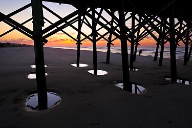 Sunrise at Folly Beach Fishing Pier in the town of Folly Beach on Folly Island along the Atlantic Coast, South Carolina, USA  -  Kirkendall-spring/ npl