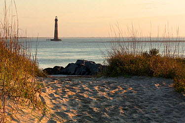 Morris Island Lighthouse viewed from the north end of Folly Island, South Carolina, USA  -  Kirkendall-spring/ npl