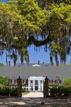 Plantation House in Boone Hall Plantation near Charleston, South Carolina, USA  -  Kirkendall-spring/ npl