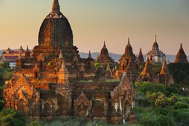 Temples of Bagan at dawn, Myanmar, November 2012  -  David Noton/ npl