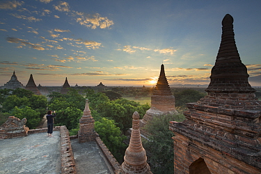 Woman taking a picture of the Temples of Bagan at sunrise, Myanmar, November 2012  -  David Noton/ npl