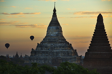 Hot air balloons over the Temples of Bagan at dawn, Myanmar, November 2012  -  David Noton/ npl