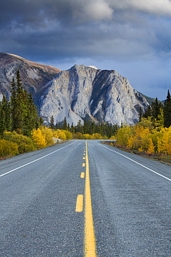 The road to Skagway with autumnal trees and mountain, South Klondike Highway, Yukon Territories, Canada, September 2013  -  David Noton/ npl