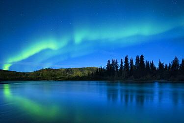 Aurora Borealis (Northern Lights) over the Klondike River, Yukon Territories, Canada, September 2013  -  David Noton/ npl