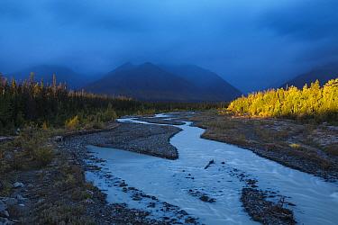 Quill Creek with the Auriol Range, St Elias Mountains, Kluane National Park, Yukon Territories, Canada, September 2013  -  David Noton/ npl