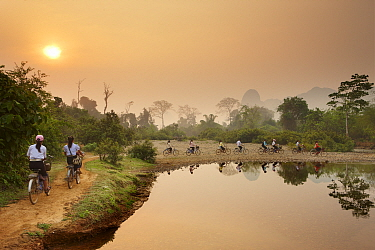 Cyclists riding bikes along riverside path at dawn, near Vang Vieng, Laos, March 2009  -  David Noton/ npl