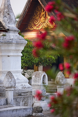 Wat Khili Temple, with flowers in the foreground, Luang Prabang, Laos, March 2009  -  David Noton/ npl