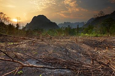 Slash and burn deforestation near Vang Vieng, Laos, March 2009  -  David Noton/ npl