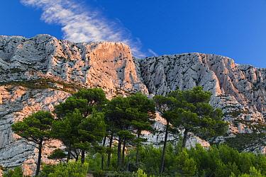 Montagne Sainte-Victoire at dawn, Var, Provence, France, October 2012  -  David Noton/ npl