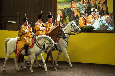 Marbachs mounted band, in traditional uniform, performing during the studs 500th anniversary celebrations Marbach National Stud, Swabian Alps, near Reutlingen, in Baden-Wurttemberg, Germany May 2014  -  Kristel Richard/ npl
