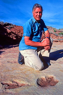 Portrait of Sir David Attenborough sitting next to dinosaur tracks whilst filming for 'Lost Worlds Vanished Lives', Utah, USA, 1989  -  Neil Nightingale/ npl