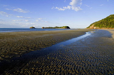 Coastal view along Casuarina Bay, Cape Hillsborough National Park, Mackay, Queensland, Australia  -  Steven David Miller/ npl