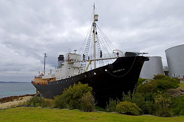 An exhibit at Whale World, a whaling ship, complete with a harpoon on the bow, at an old whaling station, Albany, Western Australia  -  Steven David Miller/ npl