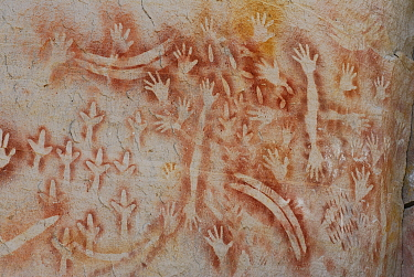 Aboriginal rock painting, Art Gallery Cave, Carnarvon National Park, Queensland, Australia The painting is believed to me more than 2000 years old and shows hands, boomerangs, emu feet and rock wallab...  -  Jouan & Rius/ npl