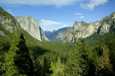 Sierra Neveda mountains and Yosemite Valley, El Capitan, Bridalveil Falls, Cathedral Rocks and Half Dome, Yosemite National Park, California, USA  -  Thomas Lazar/ npl