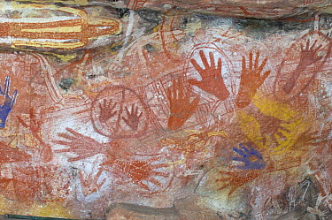 Aboriginal rock art paintings of hands and creatures at Main Art Site, Mt Borradaile, Arnhem Land, Northern Territory, Australia  -  Steven David Miller/ npl