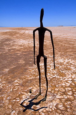 Fifty-one carbonised statues, rendered from full body scans of the citizens of Menzies, now inhabit the dried salt bed of Lake Ballard The statues were created by Antony Gormley for Perth's 2003 Arts...  -  Steven David Miller/ npl