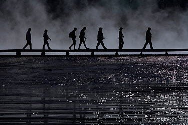 Tourists silhouetted on boardwalk at Midway Geyser Basin Yellowstone National Park, Wyoming, USA, September  -  Peter Cairns/ npl