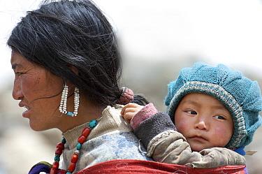 Portrait of Ladakhi woman carrying infant on her back, Phyang, Kardung village, Ladakh, India, June 2010  -  Bernard Castelein/ npl