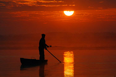 Fisherman silhouetted angling from traditional punt as the sun rises over the Biebrza river and marshes, Biebrza National Park, Podlaskie, Poland, May 2008  -  Nick Upton/ npl
