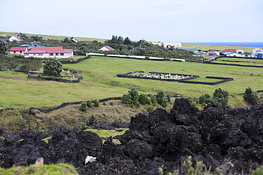 Houses and the cemetery in Edinburgh of the Seven Seas with solidified lava in the foreground Tristan da Cunha, South Atlantic Islands, March 2007  -  Troels Jacobsen/ npl