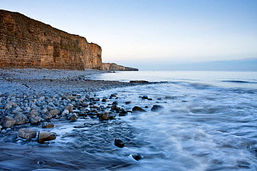 The cliffs of Llantwit Major on the Glamorgan Heritage Coast, Wales, December 2010  -  Merryn Thomas/ npl