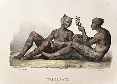 Early Lithographic print by Carl Brodtmann from Dr Shinz, 'Naturgeschichte und Abbilldungen des Menschen der verschiedenen' 1827, with hand colouring A pair of Marquesas men with traditional tribal ta...  -  Paul D Stewart/ npl