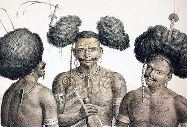 Early Lithographic print by Honegger drawn by Fuchs, from Dr Shinz, 'Naturgeschichte und Abbilldungen des Menschen der verschiedenen' 1827, 1840, with hand colouring A trio of Papua New Guinea men wit...  -  Paul D Stewart/ npl