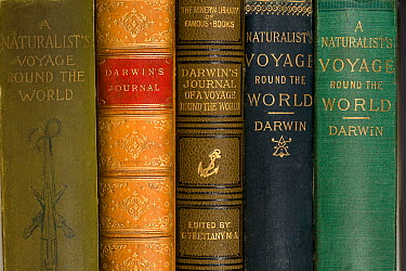 Various mid to late 19th Century editions of Darwin's 'Journal of Researches' from his Beagle voyage After the Origin of Species this book is Darwin's most numerously republished and widely read book...  -  Paul D Stewart/ npl