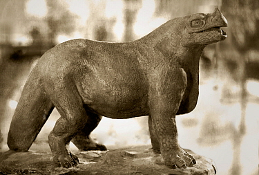 1854 Iguanodon model by Waterhouse Hawkins Hawkins attempted to scientifically reconstruct dinosaurs for the Crystal Palace Geological Gardens at Sydenham 1852-1855 He was helped by Richard Owen, the...  -  Paul D Stewart/ npl