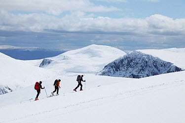 Three hikers walking up a snow covered hillside Cairngorm National Park, Scotland, UK, April 2012 2020VISION Exhibition  -  Mark Hamblin/ 2020V/ npl