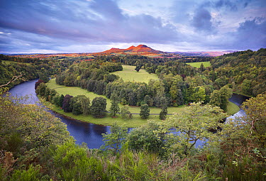 Scott's View looking towards Eildon Hill with the River Tweed in the foreground, Berwickshire, Scotland, UK, October 2011 2020VISION Exhibition 2020VISION Book Plate Did you know? u9 million has recen...  -  Joe Cornish/ 2020V/ npl
