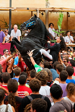 Lady riding a black Menorquin stallion, performing the bot or walking courbette of the Doma Menorquina, during the festival Mare de Deu de Gracia, in Mahon, Menorca, Spain 2012 Tourists are trying to...  -  Kristel Richard/ npl