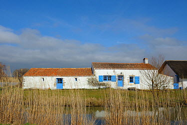 Traditional houses near salt marshes Vendee, West France, March 2010  -  Loic Poidevin/ NPL