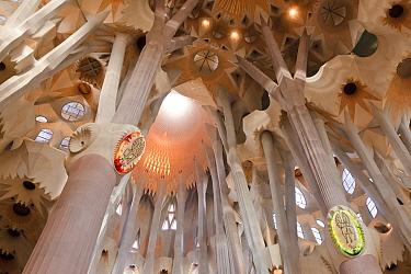 Basilica and Expiatory Church of the Holy Family, Bas?lica y Templo Expiatorio de la Sagrada Familia, designed by architect, Antoni Gaudi, Eixample district, Barcelona City, Spain, November 2011  -  Juan Manuel Borrero/ npl