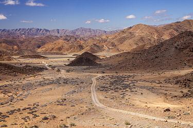 Gravel road through the Richtersveld South Africa, October 2012  -  Chris Mattison/ npl