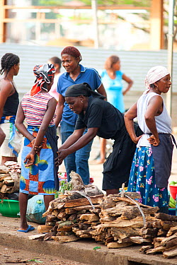 Women selling wood for fuel in Sao Tome market, Sao Tome, Democratic Republic of Sao Tome and Principe, Gulf of Guinea Lack of cooking fuels puts pressure on natural resources and much comes from wood...  -  Jabruson/ npl