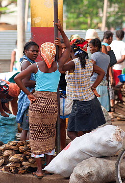 Women primarily control the sale of charcoal and wood in Sao Tome market, Sao Tome, Democratic Republic of Sao Tome and Principe, Gulf of Guinea Lack of cooking fuels puts pressure on natural resource...  -  Jabruson/ npl