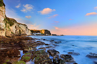 White park bay, North Antrim coastline, Ireland, December 2012  -  Robert Thompson/ npl