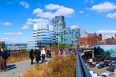 People walking on the High Line, a mile long New York City park on a section of former elevated railroad along the Lower West Side, New York, USA, October 2011  -  Gavin Hellier/ npl
