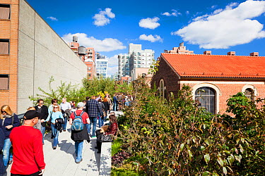 People walking on the High Line, a 1-mile New York City park on a section of former elevated railroad along the Lower West Side, New York, USA, October 2011  -  Gavin Hellier/ npl