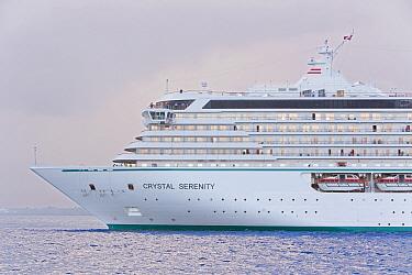 Large cruise liner ship arriving in Bermuda, 2007  -  Gavin Hellier/ npl