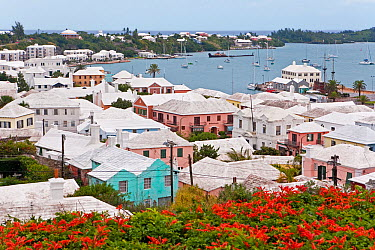 Elevated view over the harbour and white stone roofed pastel coloured buildings of historical town of St George, an UNESCO World Heritage Site, St George's Parish, Bermuda 2007  -  Gavin Hellier/ npl