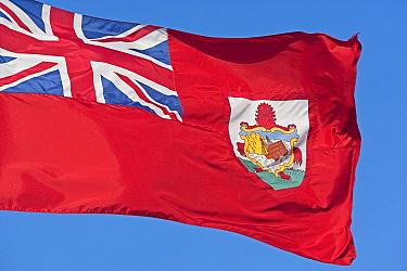 National flag of Bermuda 2007  -  Gavin Hellier/ npl